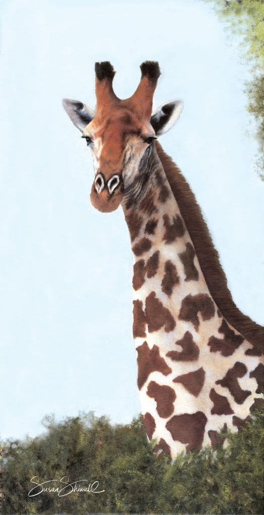 "<span class=""show_in_gallery"">Giraffe Portrait</span><span class=""show_in_popup""><a href=""https://www.natureinart.com/shop/original/giraffe-portrait-2-original-art/"" class=""pop-color1"">More info...</a></span>"