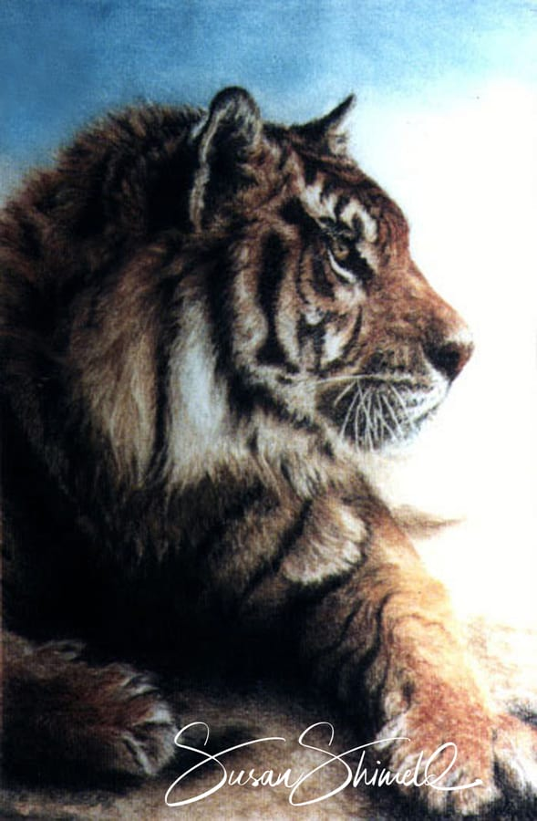 "<span class=""show_in_gallery"">Tiger</span><span class=""show_in_popup""><a href=""https://www.natureinart.com/shop/original/tiger/"" class=""pop-color1"">More info...</a></span>"