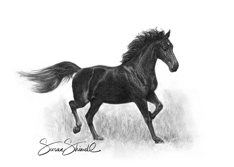 "<span class=""show_in_gallery"">Kindersong</span><span class=""show_in_popup""><a href=""https://www.natureinart.com/shop/original/black-horse-original-art/"" class=""pop-color1"">More info...</a></span>"