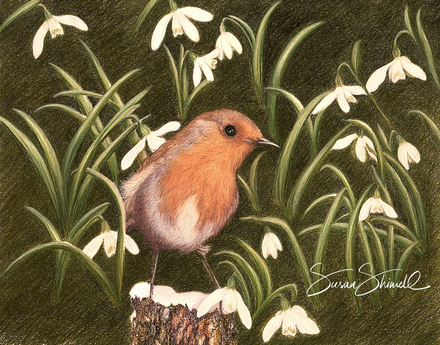 "<span class=""show_in_gallery"">Robin in Snowdrops</span><span class=""show_in_popup""><a href=""https://www.natureinart.com/shop/original/robin-in-snowdrops-original-art/"" class=""pop-color1"">More info...</a></span>"