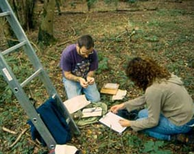 Susan Shimed and Colin Morris bat survey early 2001