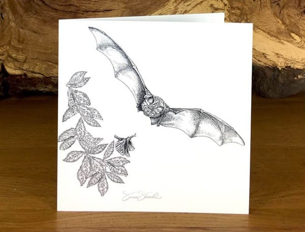 Greater Horseshoe Bat greetings card. Artwork by Susan Shimeld