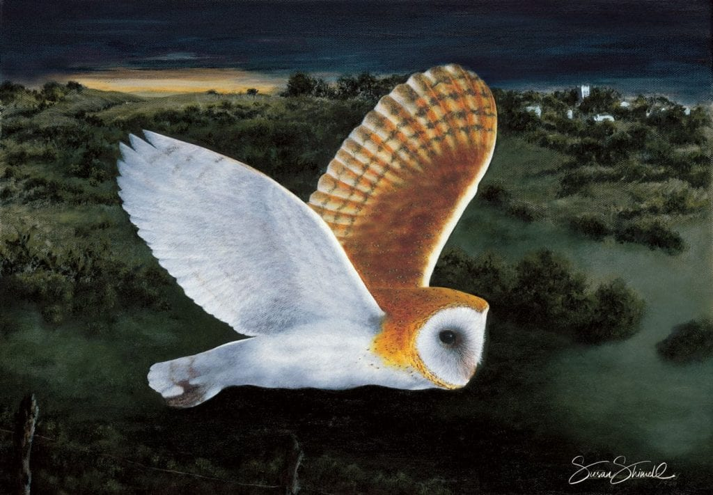 "<span class=""show_in_gallery"">Barn Owl in Moonlight</span><span class=""show_in_popup""><a href=""https://www.natureinart.com/shop/original/barn-owl-in-moonlight-original-art/"" class=""pop-color1"">More info...</a></span>"