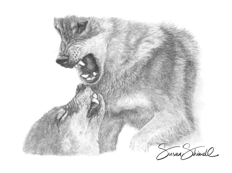 "<span class=""show_in_gallery"">Dominance</span><span class=""show_in_popup""><a href=""https://www.natureinart.com/shop/fine-art/dominance-wolves/"" class=""pop-color1"">More info...</a></span>"