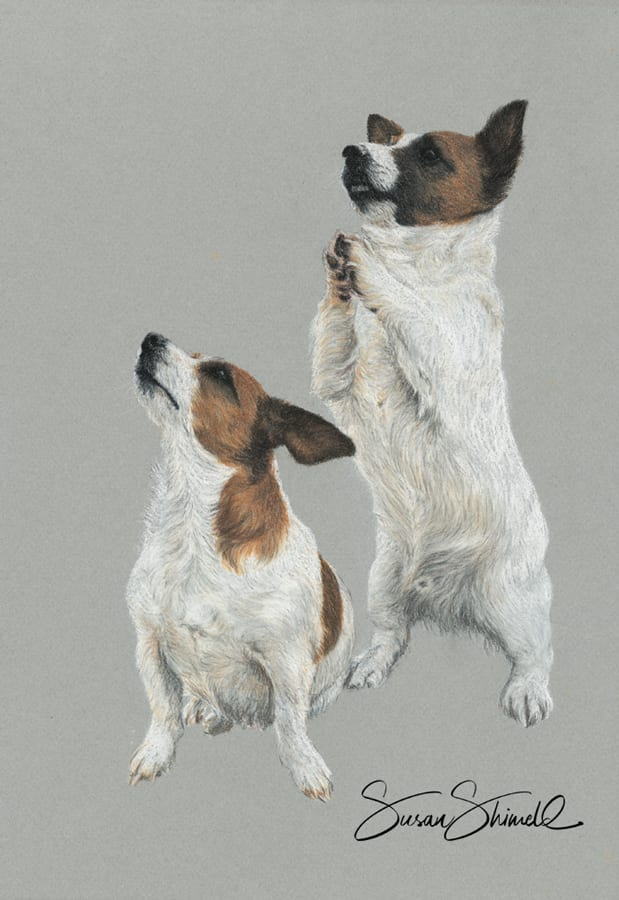"<span class=""show_in_gallery"">Jack Russell Terriers</span><span class=""show_in_popup""><a href="" https://www.natureinart.com/shop/original/jack-russell-terriers-original-art/"" class=""pop-color1"">More info...</a></span>"