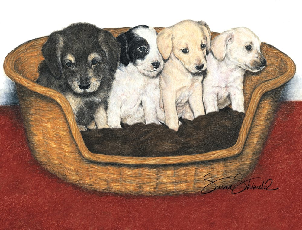 "<span class=""show_in_gallery"">Basket of Puppies</span><span class=""show_in_popup""><a href=""https://www.natureinart.com/shop/original/basket-of-puppies-original-art/"" class=""pop-color1"">More info...</a></span>"