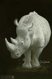 270pixeyWhite-Rhino-Print.